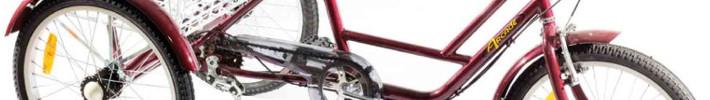 Tricikli odrasli