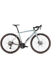 Specialized Diverge Comp Carbon /2021