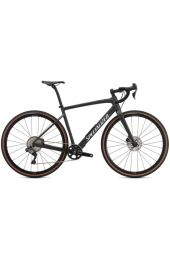 Specialized Diverge Expert Carbon /2021